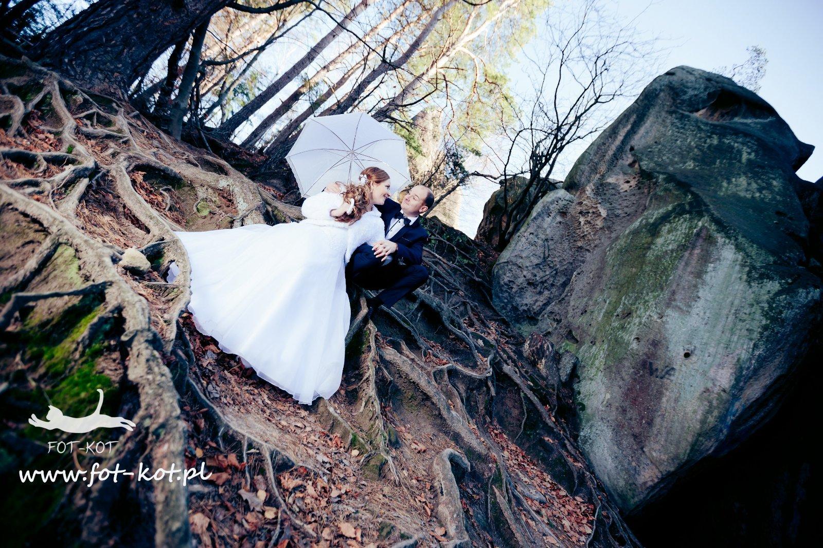 Fotografia ślubna Ropczyce Fotograf Wesele Porównanie 148 Ofert