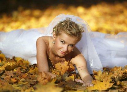 Alejafoto-  Wyjatkowe fotografie i Super oferta