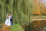 AMC Wedding